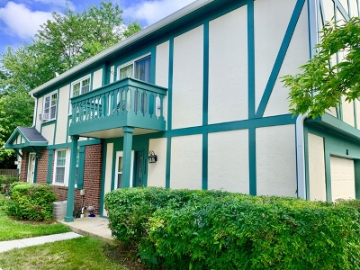 Vernon Hills Condo/Townhouse New: 111 Lindenwood Court #111