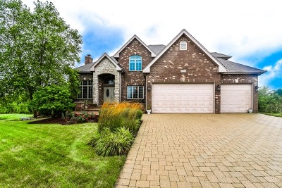 Frankfort Single Family Home For Sale: 20074 Waterview Trail