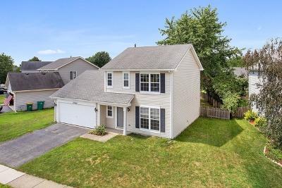 Plainfield Single Family Home New: 13760 South Jane Circle
