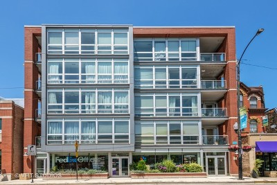 Chicago Condo/Townhouse New: 744 West Fullerton Parkway #403