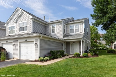 Naperville Condo/Townhouse New: 917 Genesee Drive #917