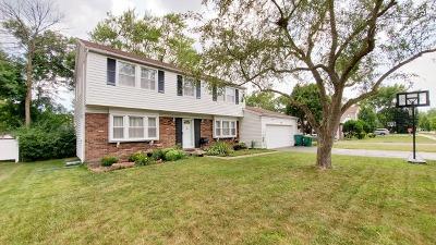 Buffalo Grove Single Family Home New: 671 Wyngate Lane
