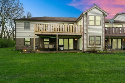 Buffalo Grove Condo/Townhouse New: 602 Hapsfield Lane #2D1