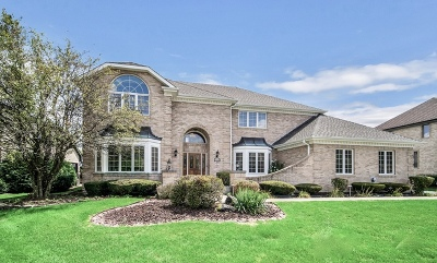 Orland Park Single Family Home New: 14613 Crystal Tree Drive