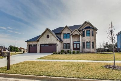 Naperville Single Family Home New: 4108 Chinaberry Lane