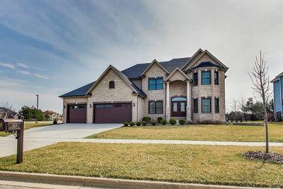 Naperville IL Single Family Home New: $662,000