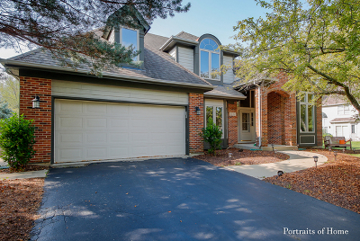 Naperville Single Family Home New: 2132 Yellowstar Lane