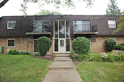 Buffalo Grove Condo/Townhouse New: 645 Grove Drive #102