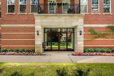 Chicago Condo/Townhouse New: 247 West Scott Street #202