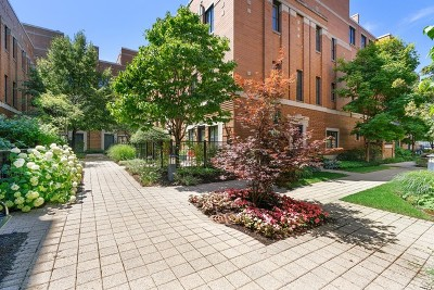 Condo/Townhouse New: 1117 West Monroe Street #19