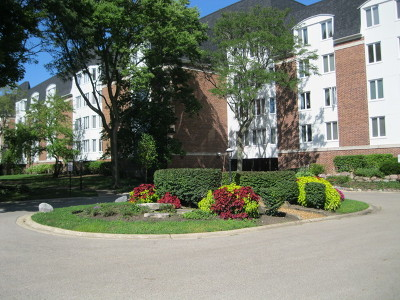 Buffalo Grove Condo/Townhouse New: 250 Lake Boulevard #221
