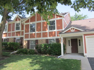 Schaumburg Condo/Townhouse New: 22 Waterbury Lane #02