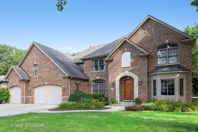 Lombard Single Family Home For Sale: 24 East Prairie Avenue