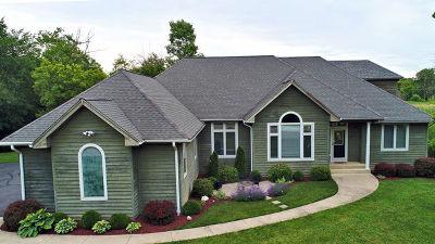 Lake Villa Single Family Home New: 38955 North Ashley Drive