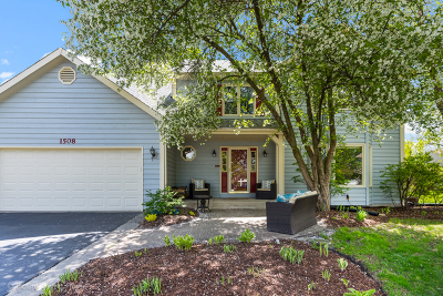 Naperville Single Family Home For Sale: 1508 Newman Court
