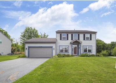 Wauconda Single Family Home For Sale: 308 Oak Grove Drive