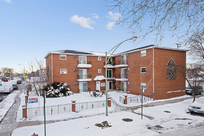 Cook County Condo/Townhouse Re-Activated: 6653 West 63rd Street #3N