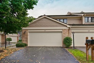 Libertyville Condo/Townhouse New: 1327 Downs Parkway