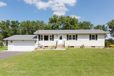Braidwood Single Family Home For Sale: 581 North Mitchell Street