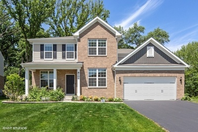 Woodridge Single Family Home New: 8104 Cedar Drive