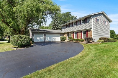 Naperville Single Family Home New: 6s560 Bridlespur Road