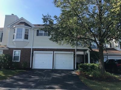 Vernon Hills Condo/Townhouse New: 875 Ann Arbor Lane #875