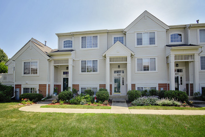 Round Lake Condo/Townhouse New: 659 South Parkside Drive
