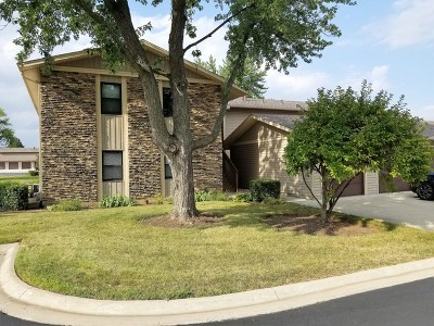 Hanover Park Condo/Townhouse New: 5880 Rembrandt Court #A