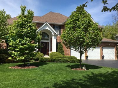 West Dundee Single Family Home For Sale: 1320 Chadwick Court
