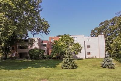 Elgin IL Condo/Townhouse New: $109,000