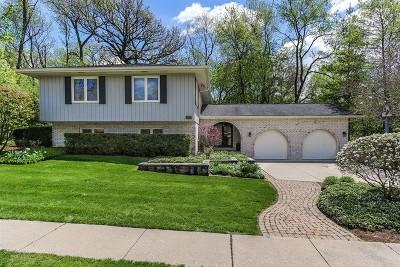 Elgin IL Single Family Home New: $299,900