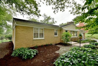 Glen Ellyn Single Family Home New: 3s154 Park Boulevard