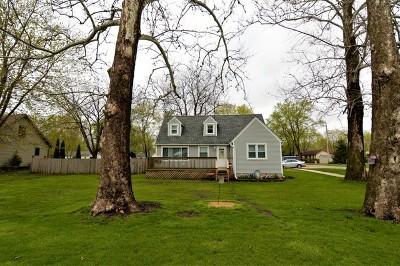 Braceville Single Family Home For Sale: 142 East North Street