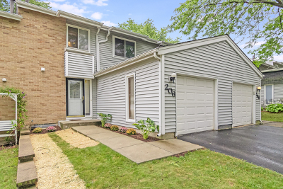 Bolingbrook Condo/Townhouse New: 206 Diane Lane