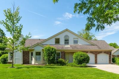 Buffalo Grove Condo/Townhouse New: 401 Satinwood Terrace