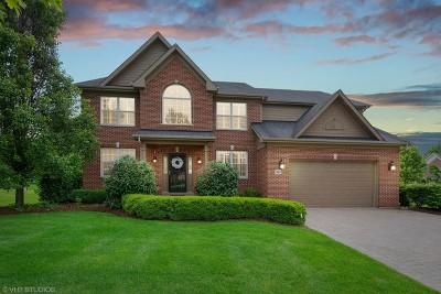 Palatine Single Family Home New: 187 South Harrison Avenue