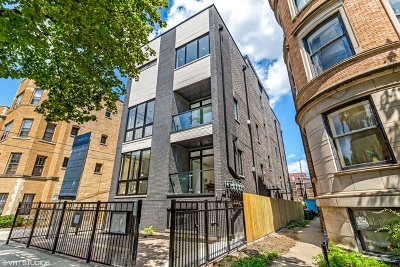 Condo/Townhouse New: 702 West Wellington Avenue #1S