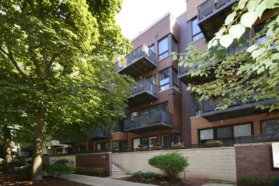 Condo/Townhouse New: 2255 West Wabansia Avenue #308