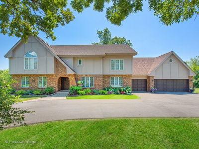 Burr Ridge Single Family Home For Sale: 10s420 Glenn Drive