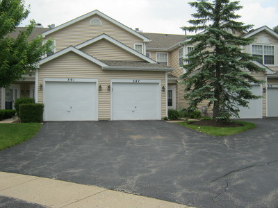 Schaumburg Condo/Townhouse New: 387 Fallbrook Court