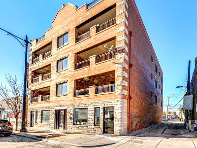 Chicago IL Commercial New: $359,900