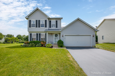 Romeoville Single Family Home New: 1703 William Drive