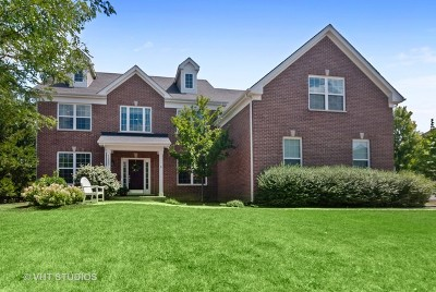 Aurora Single Family Home For Sale: 1225 Verona Ridge Drive