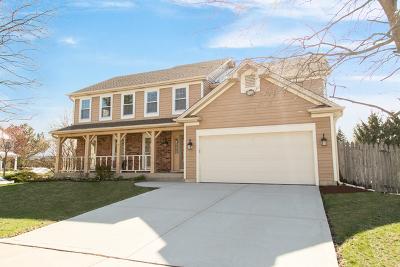 Winfield Single Family Home New: 0n622 Brandon Boulevard