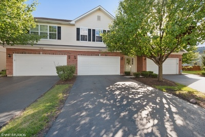 Romeoville Condo/Townhouse New: 1959 West Crestview Circle #1
