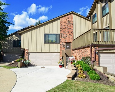 Willowbrook Condo/Townhouse For Sale: 18 Lakeview Court