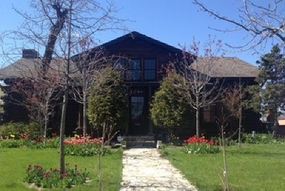 Des Plaines Single Family Home For Sale: 796 Center Street
