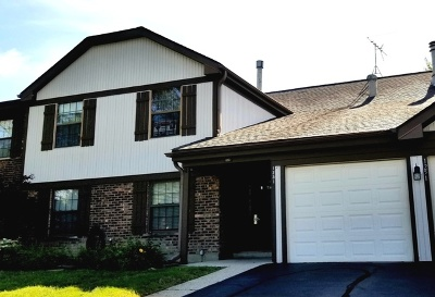 Schaumburg Condo/Townhouse New: 1251 Williamsburg Drive #C-2
