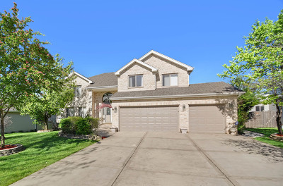 Romeoville Single Family Home For Sale: 626 Superior Drive