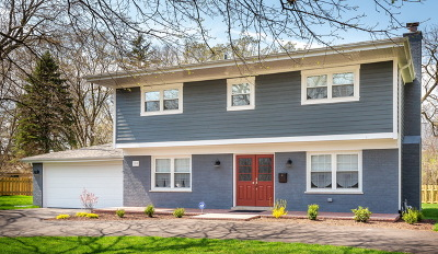 Hinsdale Single Family Home New: 104 Columbia Avenue